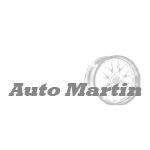 Auto Martin des Haller Martin